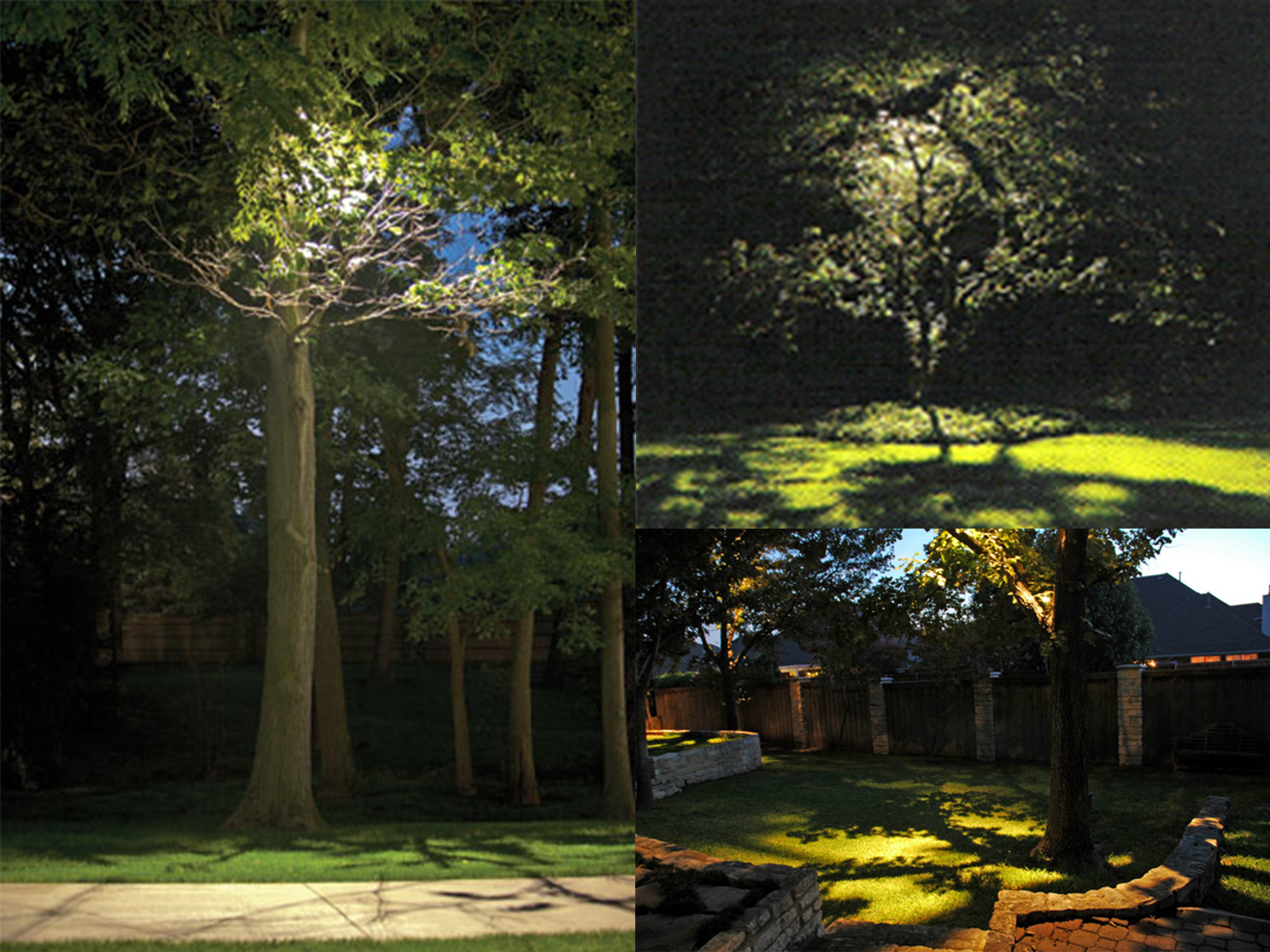 Low Voltage Landscape Lighting For Trees : Garden lighting tips from national